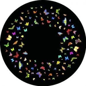 Papillon2028Coloured2920FG8102 1